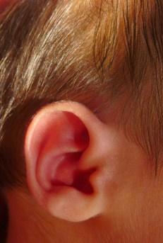 body_ear