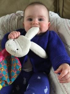 eating_bunny