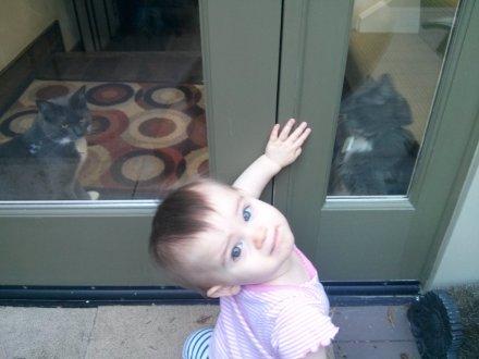 kittens_through_side_door