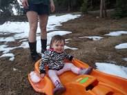 sledding_vanessa_4