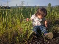 brooke_grass_1