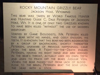 million_dollar_cowboy_bar_bear_plaque
