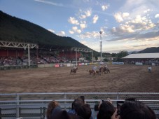 rodeo_2