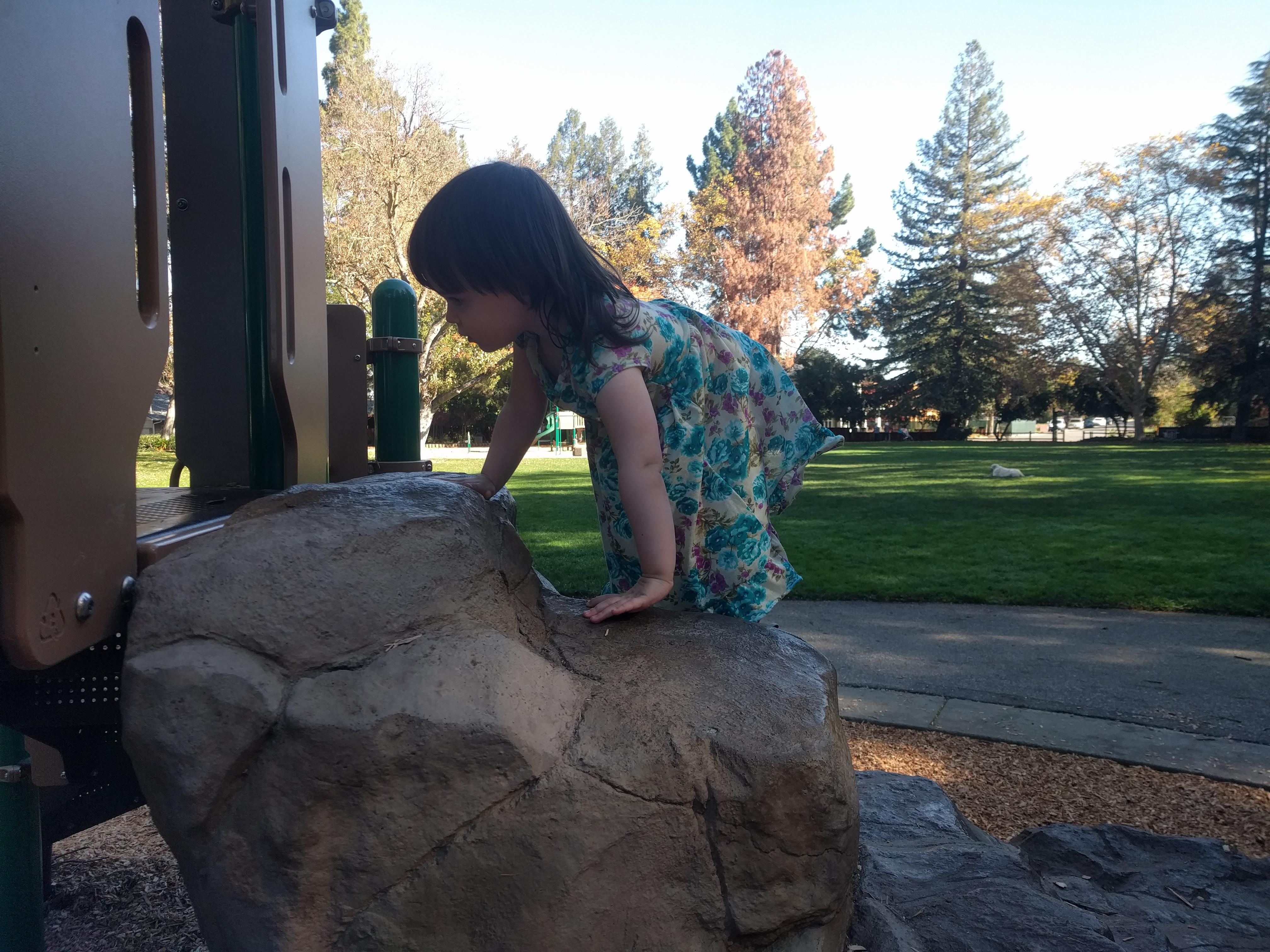 ashcrafts_park_climbing_rocks