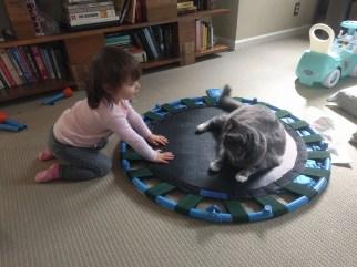 trampoline_stitch