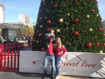 union_square_christmas_tree_ryan_brooke_gina