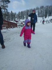 snow_walking