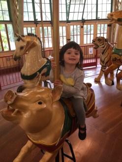 zoo_carousel_2