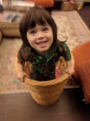 laundry_basket_2