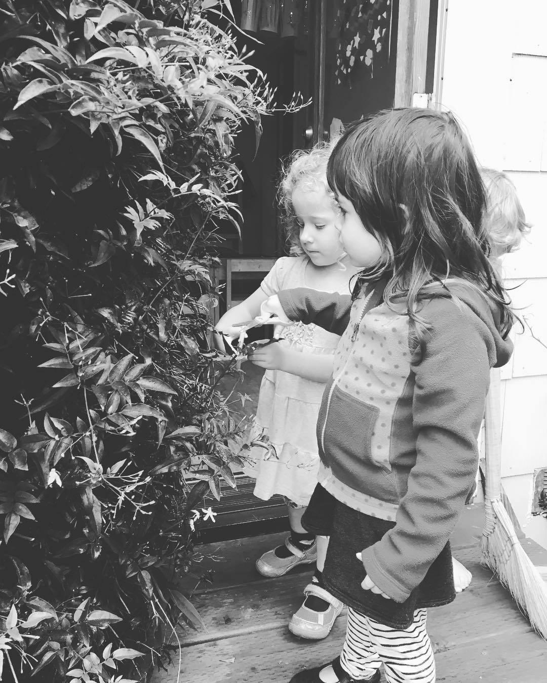 playschool_inspecting_plant