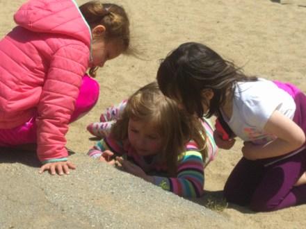 making_friends_in_sandbox