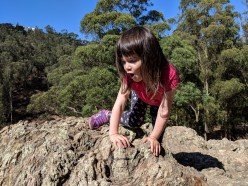 canyon_rock_climbing