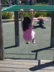 playground_monkey_bars