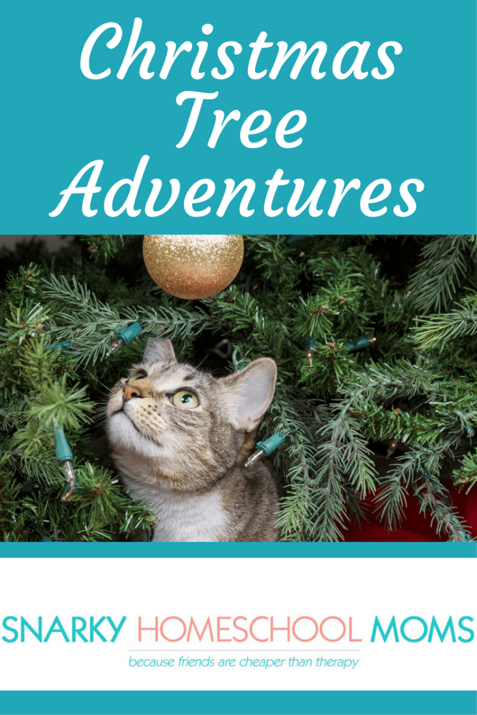 Christmas Tree Adventures - Snarky Homeschool Moms podcast