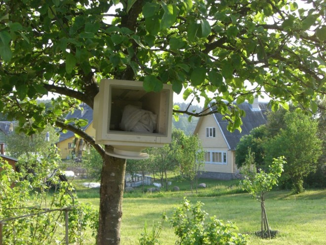 Computer, hanging from a tree, in a national park in Lithuania. Really? Really.