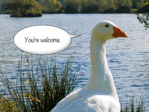 Generous Goose