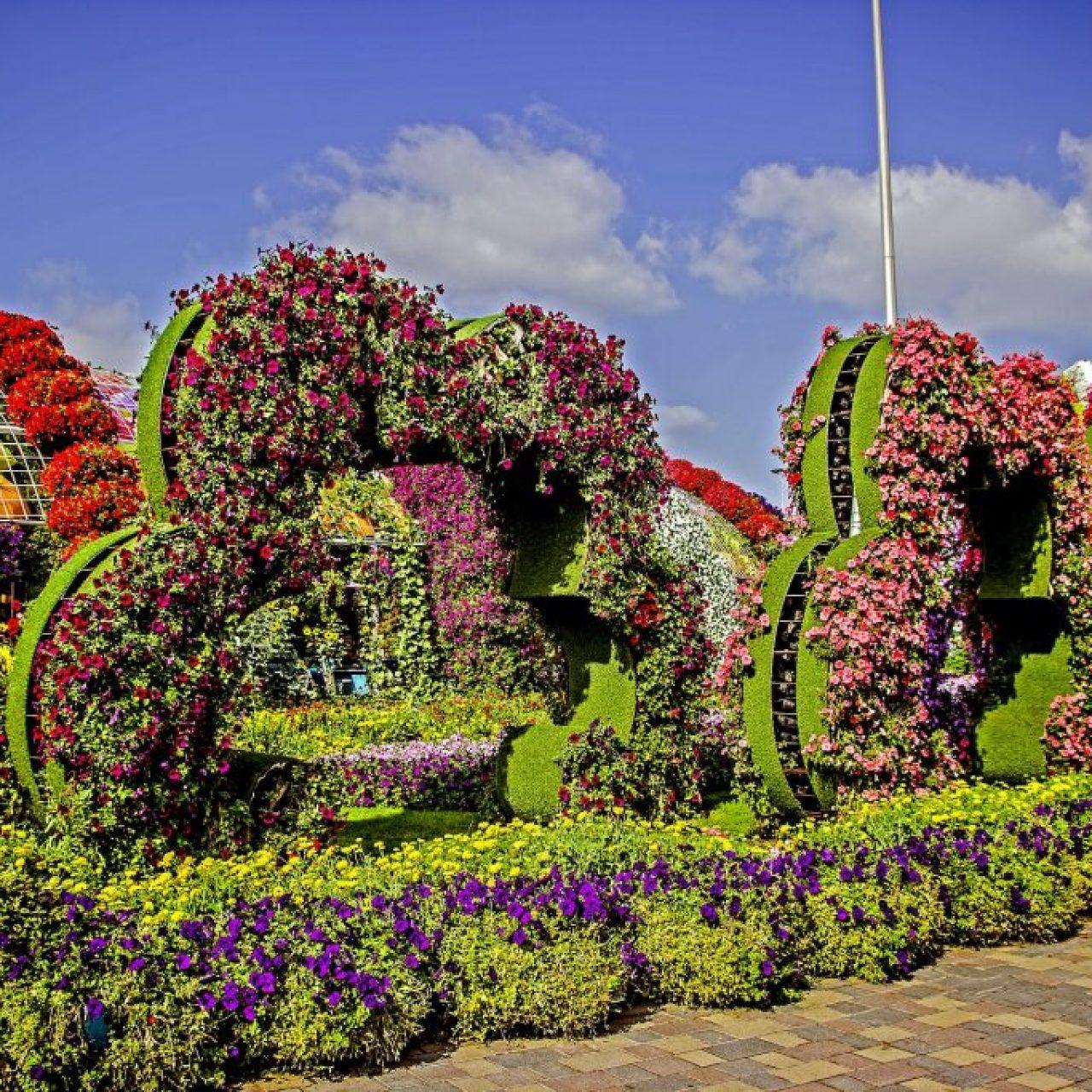 miracle garden dubai 3686191 1920 1 Snazzy Trips