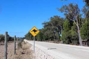 australia 2282288  480 Snazzy Trips