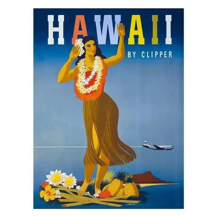 hawaii print Snazzy Trips