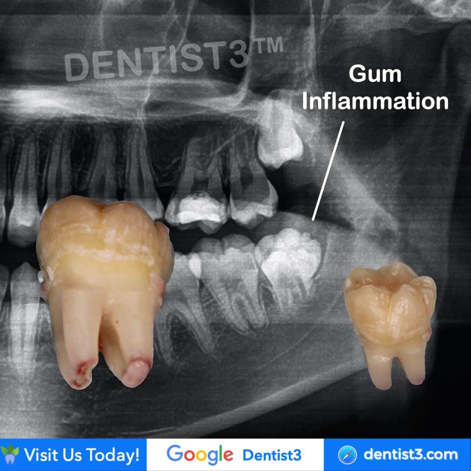 dentist3-mos.jpg