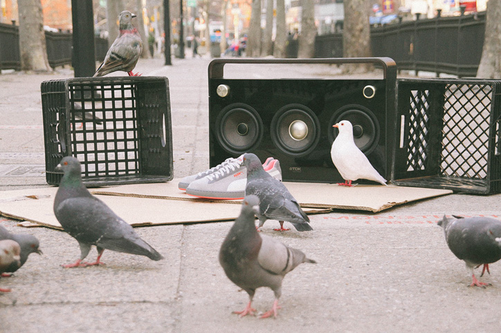 "Photo02 - Staple x PUMA Suede ""Pigeon"" 日本での発売が決定"