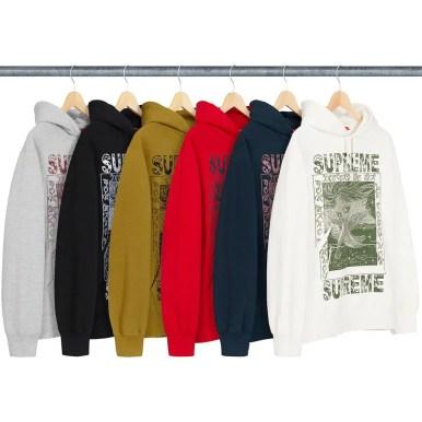 シュプリーム 新作 WEEK 2 (Supreme_2019fw_Doves Hooded Sweatshirt)