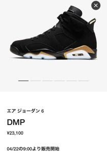 Nike Air Jordan 6 DMP ナイキ エア ジョーダン 6