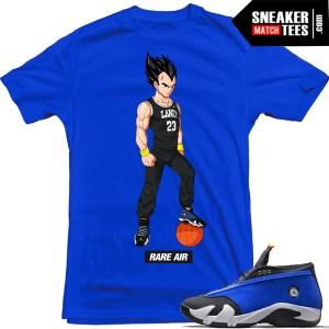 Laney-14s-matching-sneaker-tee-shirts