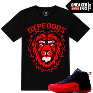 Air Jordan 12 Flu Game matching Sneaker tees