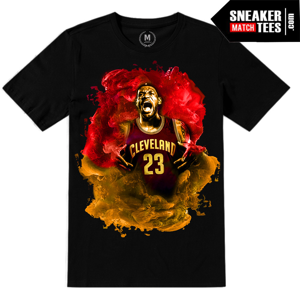 separation shoes 2bdb0 13520 Lebron James | Limited Release | Playoffs Black tee