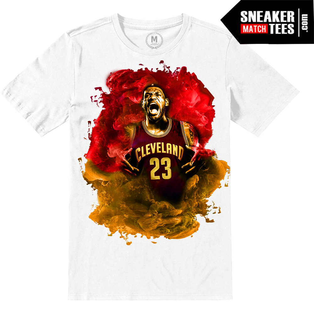 separation shoes 5d2e1 7aa8d Lebron James | Limited Release | Playoffs White Tee