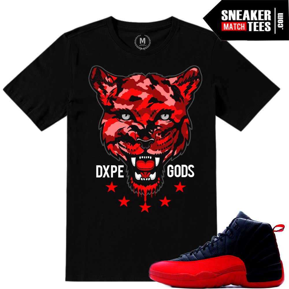 Flu Game 12s jordan Retros