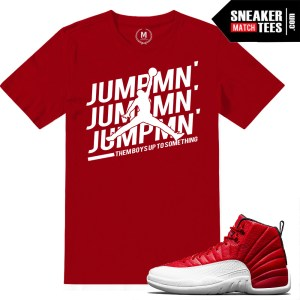 Jordan t shirts match Gym Red 12s
