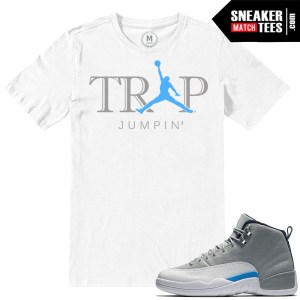 Wolf Grey 12s Matching T shirts
