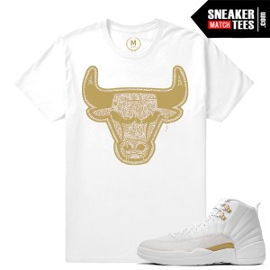 OVO 12 t shirt match Jordan Retros