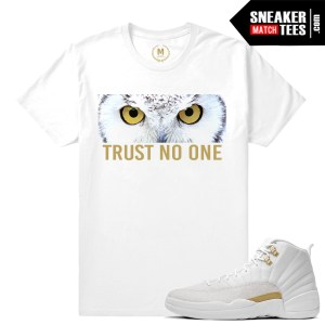 OVO 12s matching sneakers tees