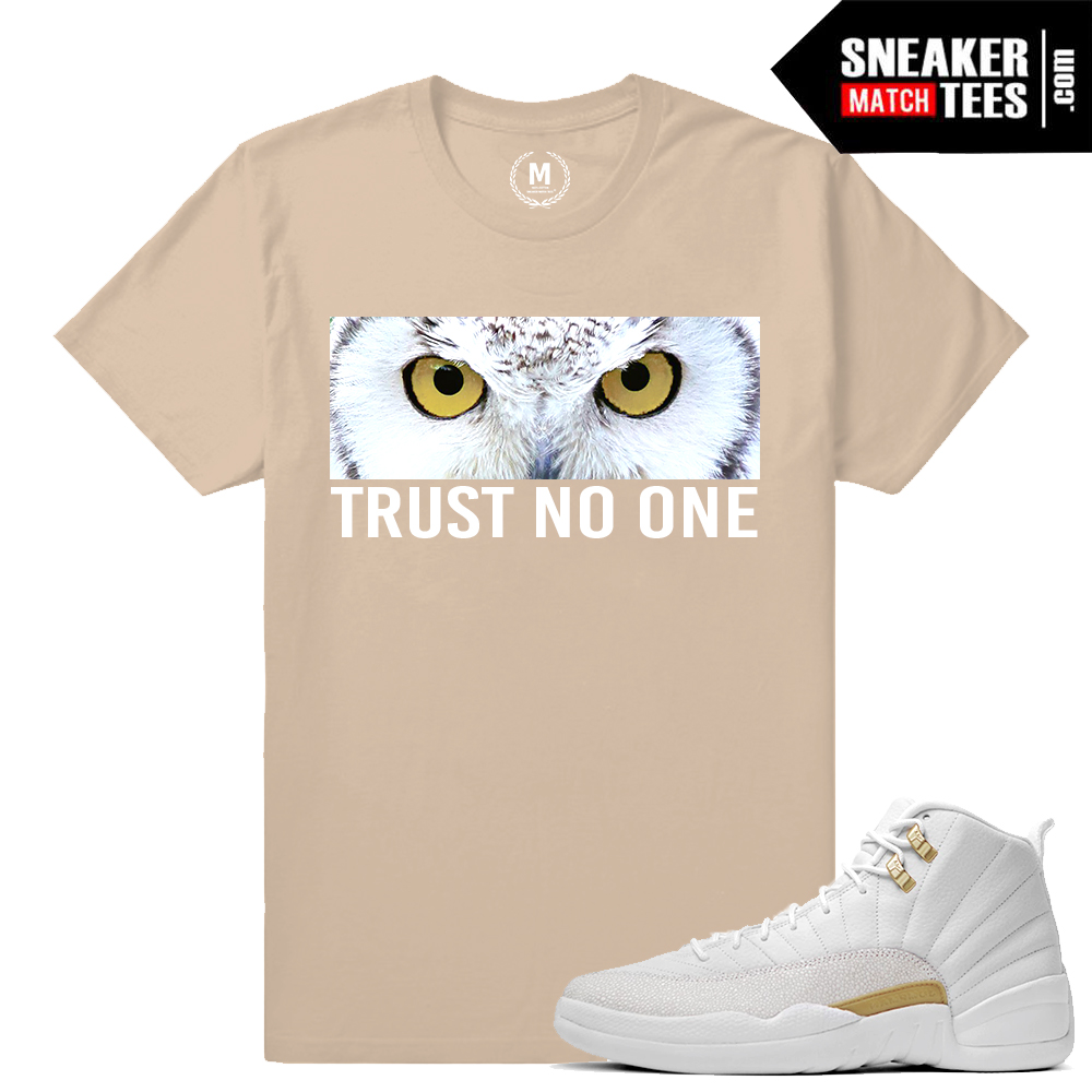 457011e5719b T shirts match Jordan 12 OVO