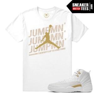 t shirts match OVO 12 Jordan Retros