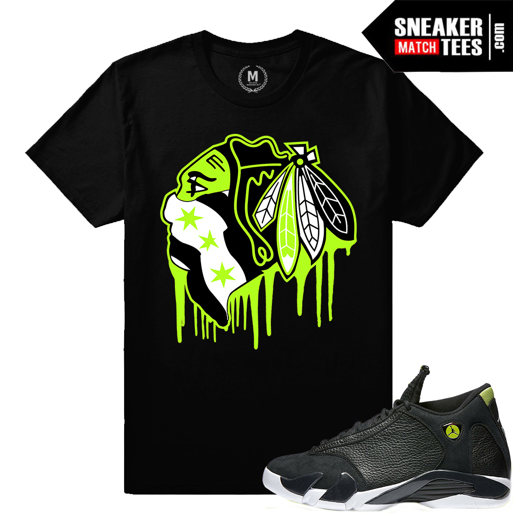 8434cb739fe ... Jordan 14   Indiglo 14s · Indiglo 14s matching sneaker tee