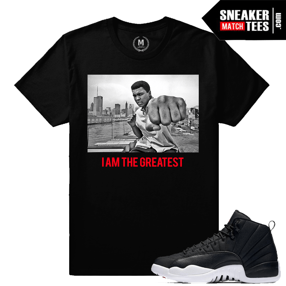 019f7d9bbcaa62 Sneaker Tees Match Jordan 12 Nylon