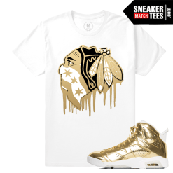 Match Jordan Retros Pinnacle 6s