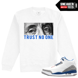 Air Jordan True Blue Retro 3 OG