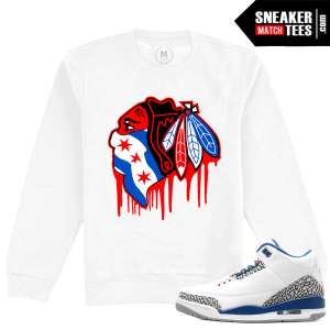 Jordan 3 True Blue Matching Sweatshirt