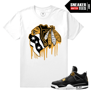 Jordan T shirt Match Royalty 4s