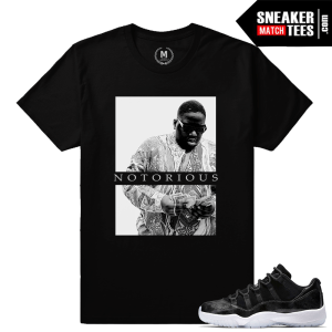 Barons 11 Jordan Sneaker Match Tees