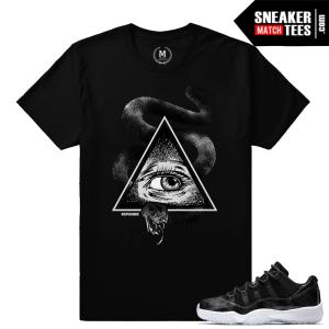 Sneaker t shirt Match Barons 11 Jordan
