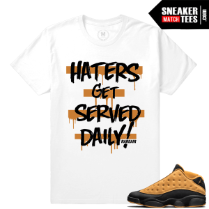 Shirt Air Jordan Chutney 13s