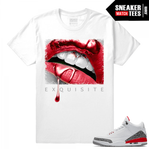 Jordan retro 3 clothing match