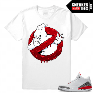 Sneaker shirts Jordan 3 Hall of Fame