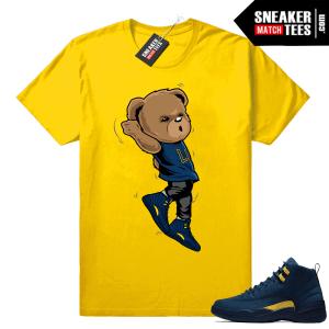Air Jordan 12 sneaker shirts
